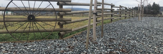 Custom Rails Stangered
